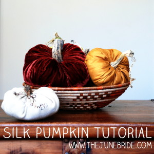 Silk Velvet Pumpkins - Tutorial by TheJuneBride.com